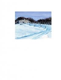 Blue Snow of the Hacienda
